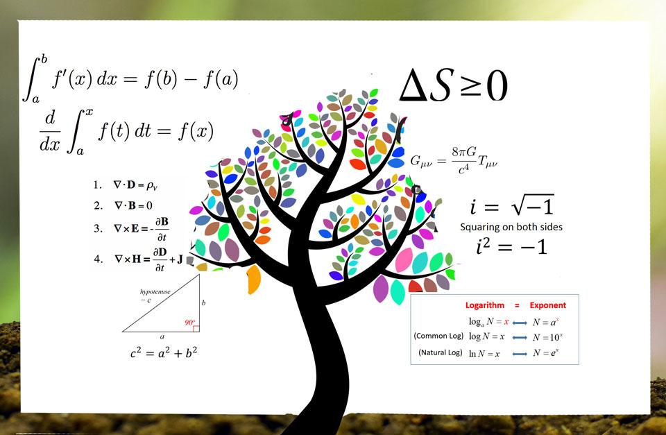 Tree of maths