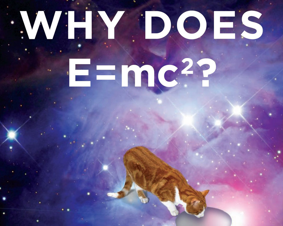 Book cover why does E=mc2
