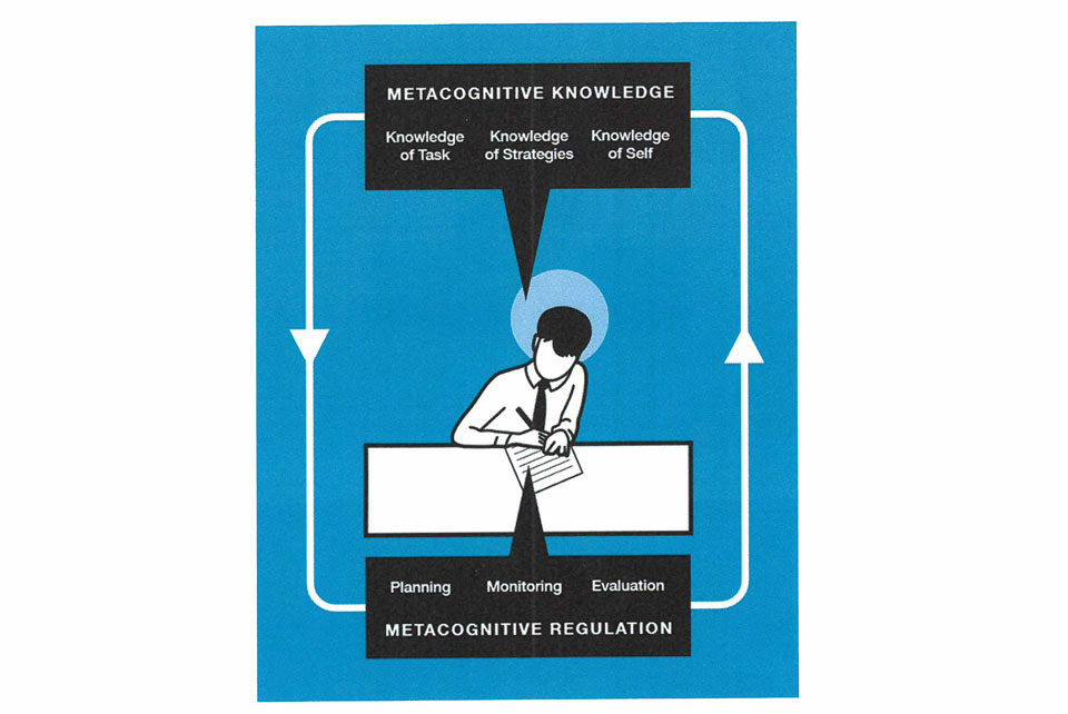 Diagram of metacognition